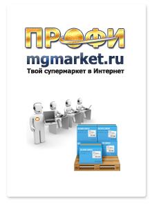 Дизайн сайта интернет-магазина «ПРОФИ»